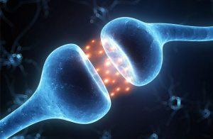 اینستاگرام و دوپامین